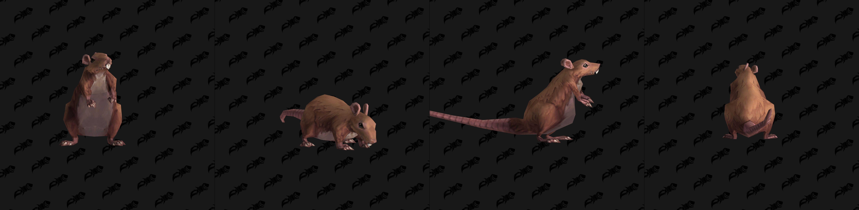 Modèle de mascotte Void-scarred Rat (patch 8.3)