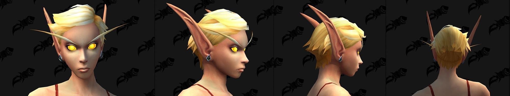 Option de personnalisation Elfe de sang : Boucles d'oreilles & piercings