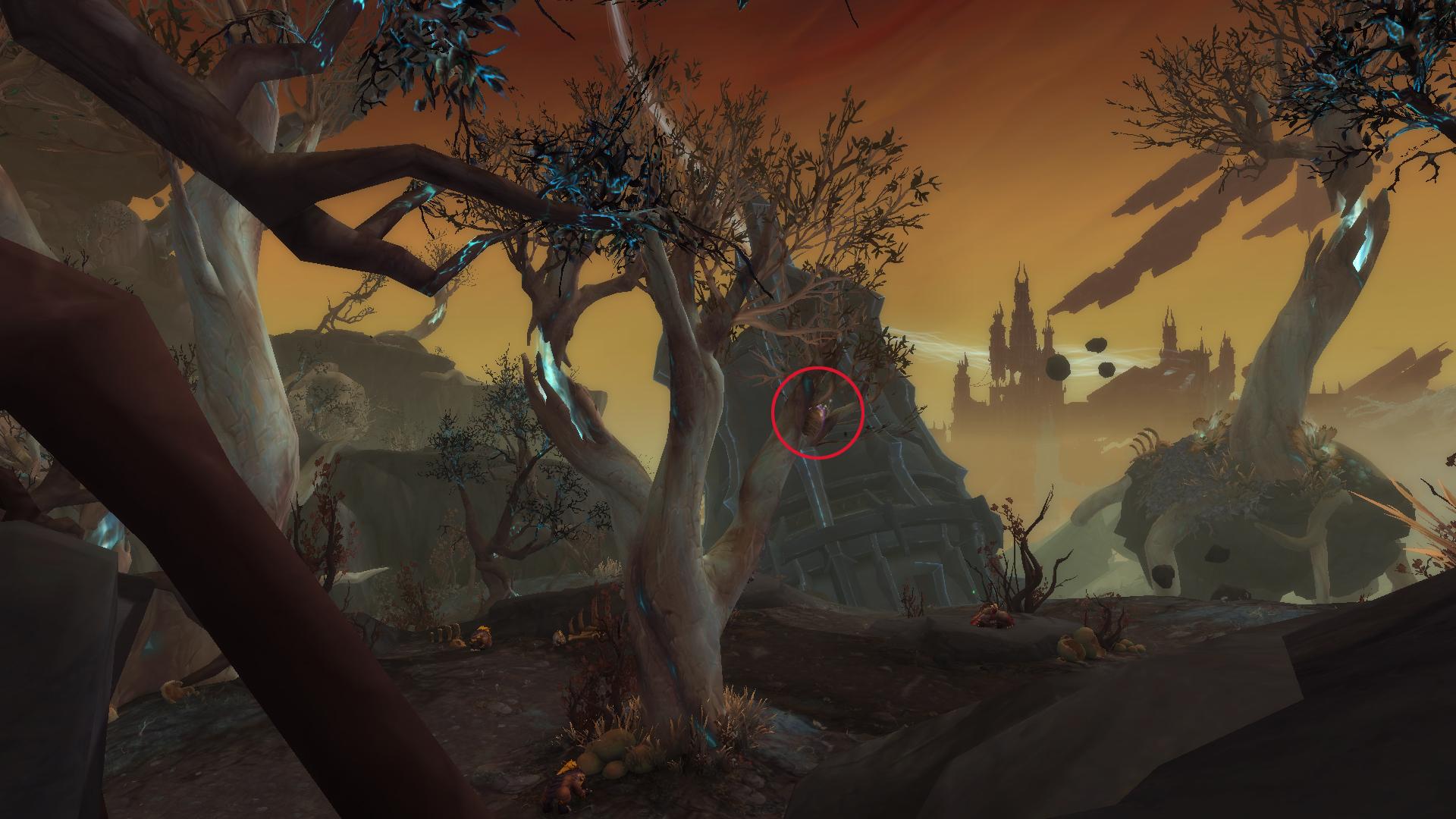 Le Nid déplacé se situe dans un arbre au Pavillon du marteleur