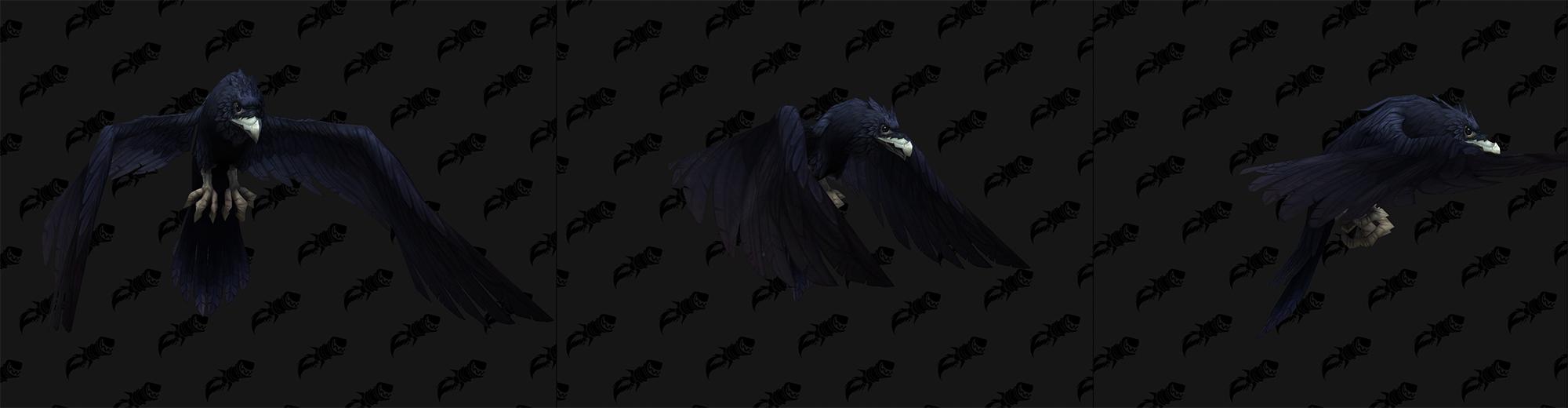 Patch 9.1.5 : Forme de voyage corbeau