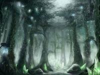 region-terokkar-forest02-full