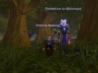04-diplomate