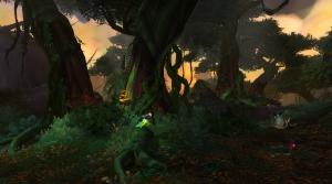 jungle-tanaan-51