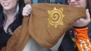Couverture Hearthstone