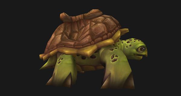 Pas de monture tortue pour le Voile d'hiver