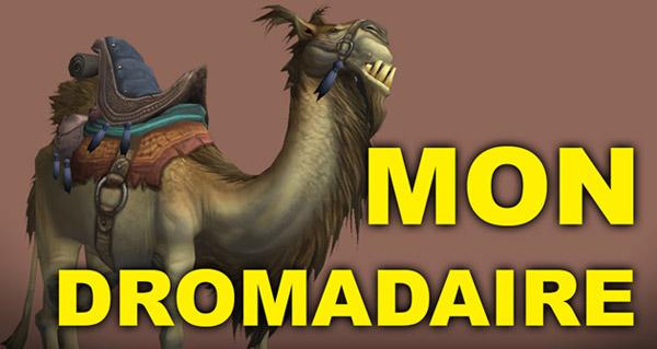Ode à mon Dromadaire : une vidéo d'hommage !