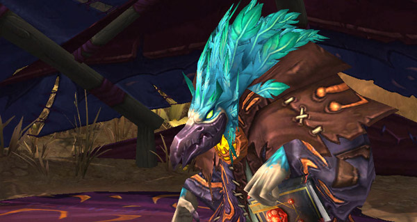 Parias arakkoa : guide