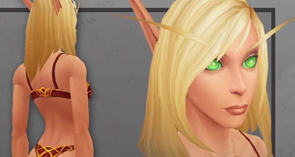 Nouveau modèle des Elfes de sang