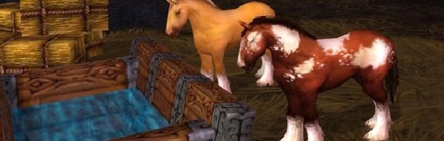 Chevauchez le poney !