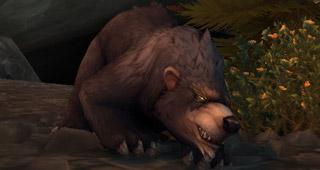 L'élite rare Griffe-hirsute