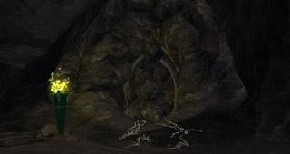 Grotte moisie sur le Rivage brisé
